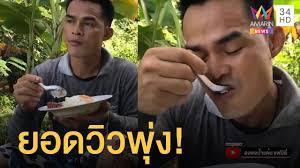 ลุงพลป้าแต๋นกินข้าวไข่ดาวโชว์ ยอดวิวพุ่งไปครึ่งล้าน - YouTube