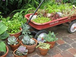 Small Picture Clever Plant Container Ideas The Micro Gardener
