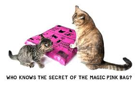 cat puzzle rug cat puzzle rug cat puzzle rug cat puzzle rug cat toy puzzle rug