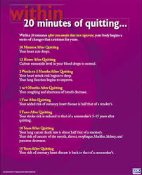 Stop Smoking Health Chart Within 20 Minutes Of Quitting Poster 2004 Surgeon