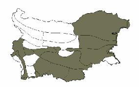 Asphodeline liburnica - The Bulgarian flora online