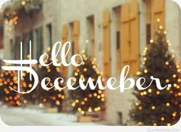 hello december christmas trees image