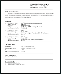 Resumes That Stand Out Gorgeous Example Resume Titles Download Resume Titles Examples That Stand Out