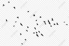 無料ダウンロードのための飛ぶ鳥のオオカリ 雁 黒い 鳥png画像素材