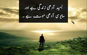 40 Inspirational Quotes On Life In Urdu Folder Mesmerizing Urdu Quotes About Death
