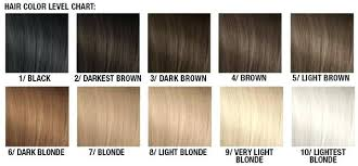 Hair Bleach Level Chart Hair Bleach Bath Il Studio Com