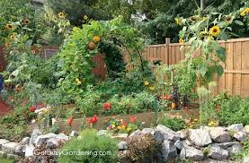 Small Picture Backyard Vegetable Garden Design How To Plan A Vegetable Garden