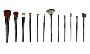 12 piece beaute basics makeup brush set
