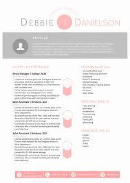 Visual Resume Templates Professional Visual Resume Templates Useful