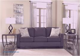 decoration dark gray couch what color rug goes with a grey