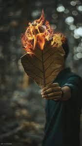 Man Leaves Fire Photography 4K Ultra HD ...