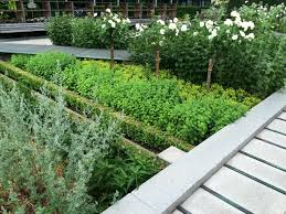Small Picture A medicinal herb garden takes root on the grounds of a global