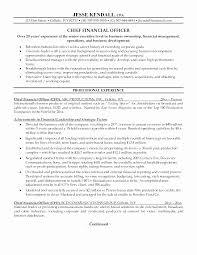 Cfo Resume Template Awesome Finance Resume Sample Doc Impressive Cfo Resume Templates Resume