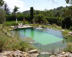 natural looking in ground pools.  Looking The Blissful Natural Pool At Orion Bu0026ampB And Treehouse In The South Of  France For Natural Looking In Ground Pools