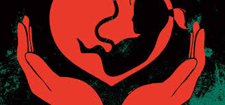 female foeticide punjab the emerging killing machine of female  female foeticide