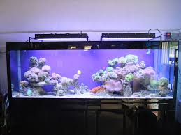 ... Contemporary And Attractive Design You Can Make The Choice To LED  Aquarium Lighting ...