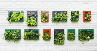 green indoor portable vertical gardens