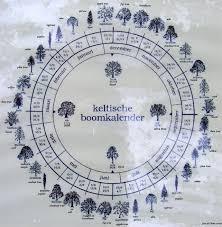 Celtic Tree Chart Celtic Tree Calendar Celtic Calendar Celtic Tree Pagan
