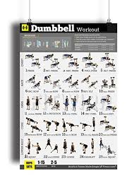 Workout Chart For Weight Gain Dumbbell Exercises Workout Poster Now Laminated Home Gym Workout Plans For Men Free Weights Strength Training Routines Build Muscles Fat