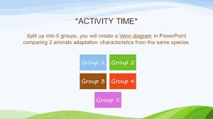 Plant And Animals Adaptations Venn Diagram Were Dependent On Interdependence Ppt Download