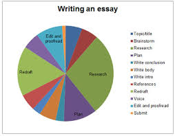 essay writing english for uni time pie chart
