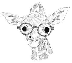 Hipster Drawings Hipster Animal Drawings By Kasrin Knackebrot Drawing Animals