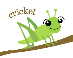 A real crickets chirp at night and faster in warmer temperatures.  Description from avrprojects.net. I searched f…   Getting rid of crickets,  Cricket, Cricket insect