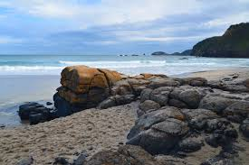 Winter Walk to Bushrangers Bay - The ...