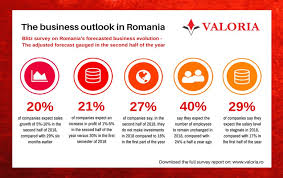 Half Of Companies In Romania Plan To Grow Investment This Year Survey