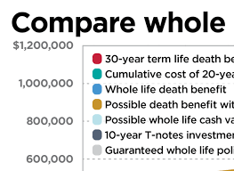 Whole Life Life Insurance Quotes