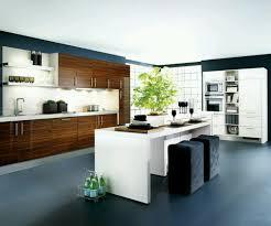 modern kitchen design homes