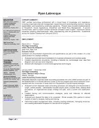Senior Business Analyst Resume Example Best of Sample Business Resume Template Refrence Sample Resume Objectives