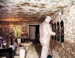 basement 911 pennsylvania. basement waterproofing norristown pa 911 pennsylvania