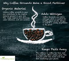 what s the best way to use coffee grounds