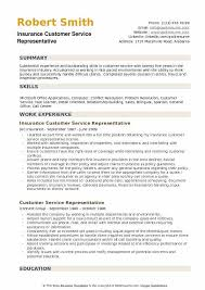 Customer Service Resume Summary Magnificent Best Customer Service Representatives Resume Example LiveCareer