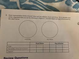 Solved Ive Attached The Lab Assignment And The Pictures