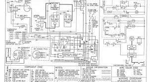 york heat pump thermostat wiring diagram professional york heat pump york heat pump thermostat wiring diagram york heat pump wiring diagram famous miller images electrical fancy