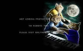 keyboard cat Anime