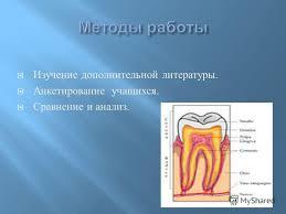 Презентация на тему Берегите зубы Доклад Скачать бесплатно и  5 Изучение дополнительной литературы Анкетирование учащихся Сравнение и анализ