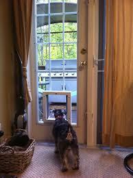 image of exterior french doors with dog door