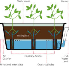 High Quality Self Watering Planters
