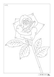 6月の花ぬりえ 塗り絵のじかん