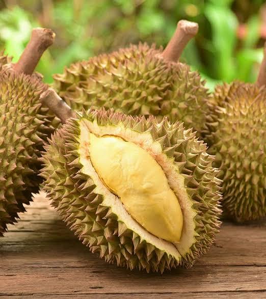 dooriyan fruits