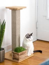 cat garden scratching post main kitty hangout spot