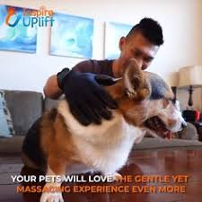 7.0<b>Inch Meisha</b> JP440C <b>Professional</b> Pet/Dog Scissors Pet ...
