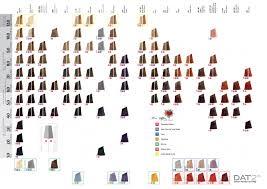 Salon Professional Supplies Pro Colour Chart Affinage Infiniti Permanent