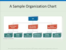 Fundamentals Of Organization Structure Ppt Video Online
