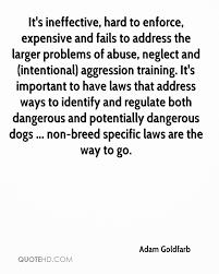 Adam Goldfarb Quotes | QuoteHD
