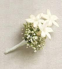 stephanotis prom boutonniere prom141