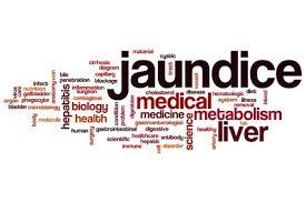 Indian Diet Plan For Jaundice What To Eat In Jaundice